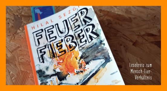 bb_feuerfieber2